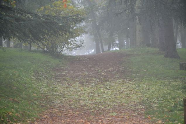 Brouillard d'automne (2)