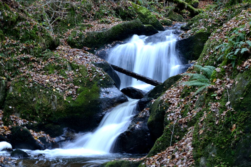 Cascade du Corbillon (11)