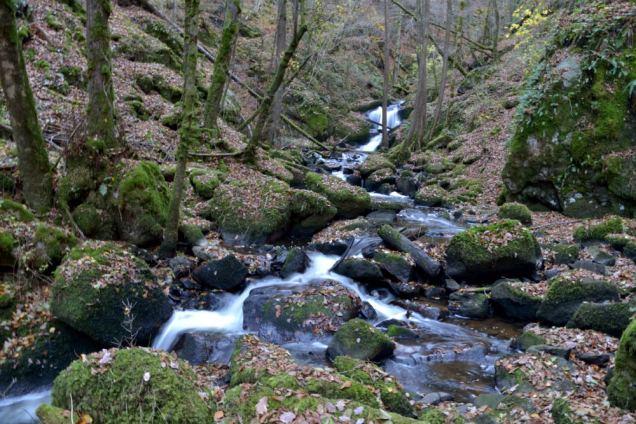Cascade du Corbillon (13)