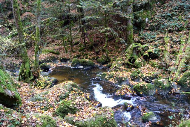 Cascade du Corbillon (15)