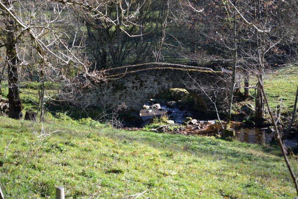 Cascade du Corbillon (17)