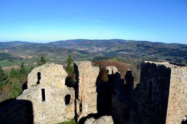 Château des Cornes d'Urfé (14)