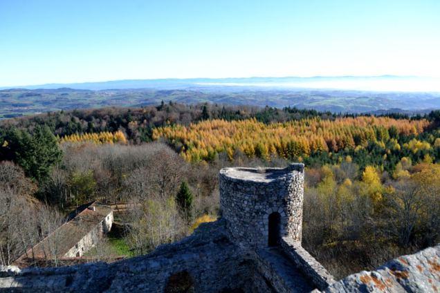 Château des Cornes d'Urfé (16)