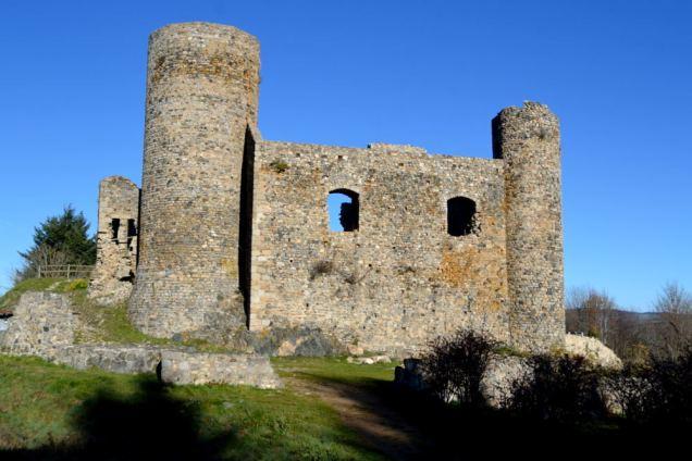 Château des Cornes d'Urfé (2)