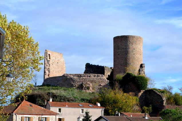Saint Jean-Saint Maurice sur Loire (15)