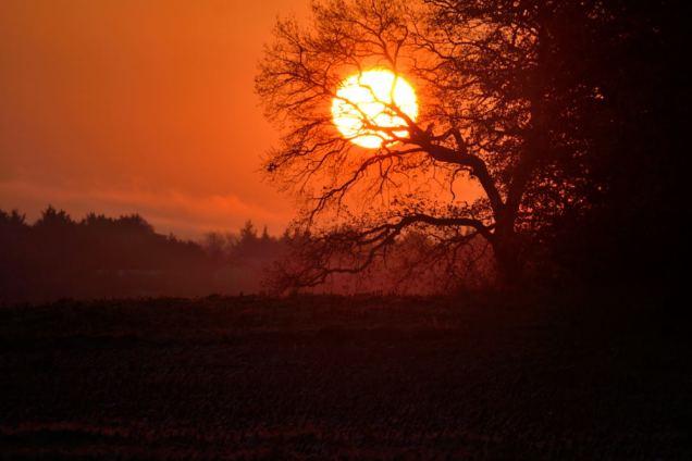 Jaune - Lever de soleil